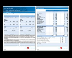 DESIGN + PRODUCTION. working directly with the VP, Sr Mgr Compliance in Chicago, we created a multi-page application - two pages shown here. the app is fillable, AODA ready and has full calculating capabilities. for the US market, english only produced, with careful attention to US spelling preferences.